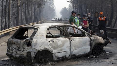 Лесные пожары в Португалии унесли жизни 62 человек