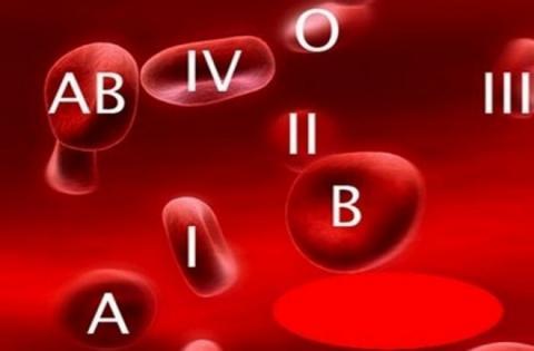 Группа крови влияет на здоровье: к каким болезням вы предрасположены, рассказали ученые