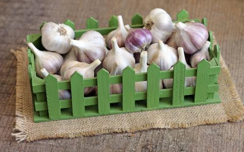 Как правильно хранить чеснок зимой в домашних условиях: лучший способ хранения чеснока до нового урожая