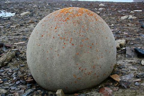 Загадочные «мячи богов» с российского острова Чамп: в Арктике обнаружены каменные сферы неизвестного происхождения