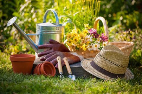 Посевной календарь для садоводов и огородников на июнь 2018 года: таблица благоприятных дней для посадки и ухода за растениями