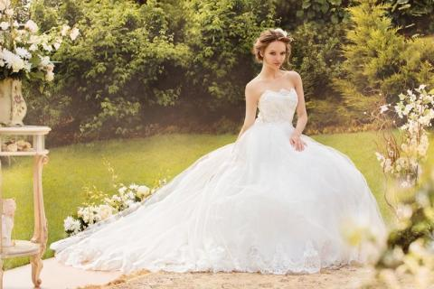 Пользователей сети смутила оптическая иллюзия со свадебным платьем