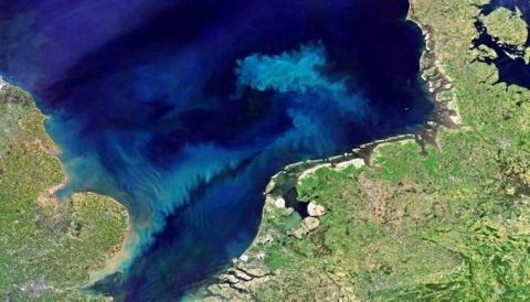 Учёные предупредили, что океаны Земли могут изменить цвет в ближайшие восемьдесят лет