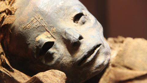 В Перу обнаружена пугающая мумия пришельца – частный коллекционер остолбенел от невероятной находки