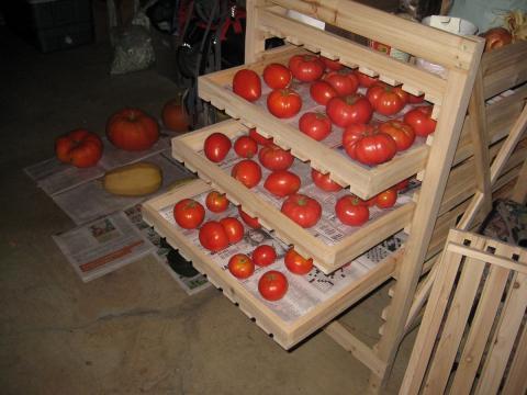 Как сохранить помидоры на зиму в домашних условиях: секреты и способы хранения свежих томатов до весны