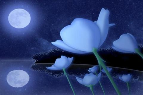 Лунный календарь дачника на 10-16 апреля раздает дельные советы