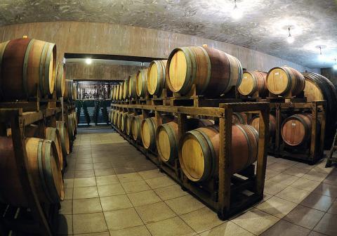 Стало известно о сокращении в России производства водки и вина