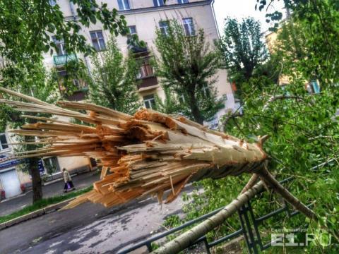 Ураган в Свердловской области 3 июня 2017 года, видео – как это было