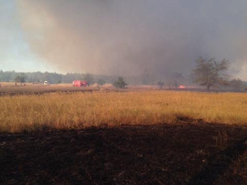 Пожар под Ростовом