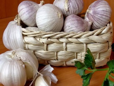 Как правильно хранить чеснок в домашних условиях, чтобы он не высох и сберег лечебные свойства