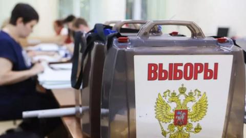 Выборы в Краснодарском крае