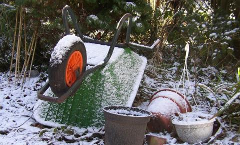 Календарь работ в огороде в ноябре