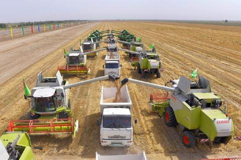 Прогноз: В России соберут один из самых больших урожаев зерна