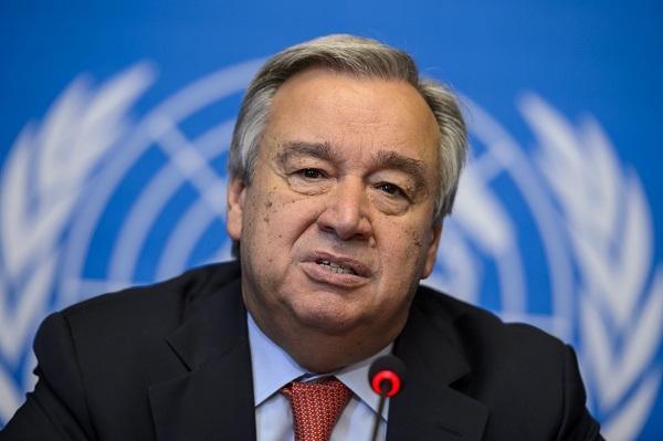 В Госдуме призвали исключить Эстонию из ООН