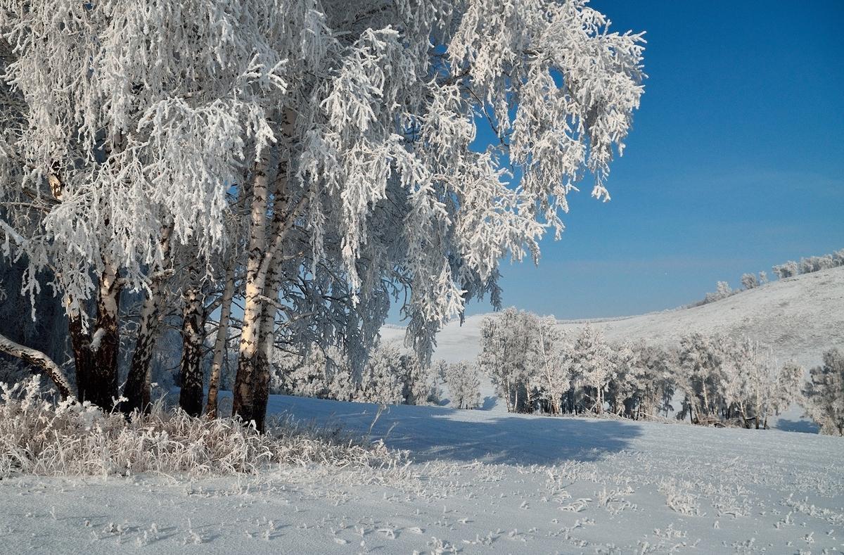 Какая будет зима 2017-2018 года в России