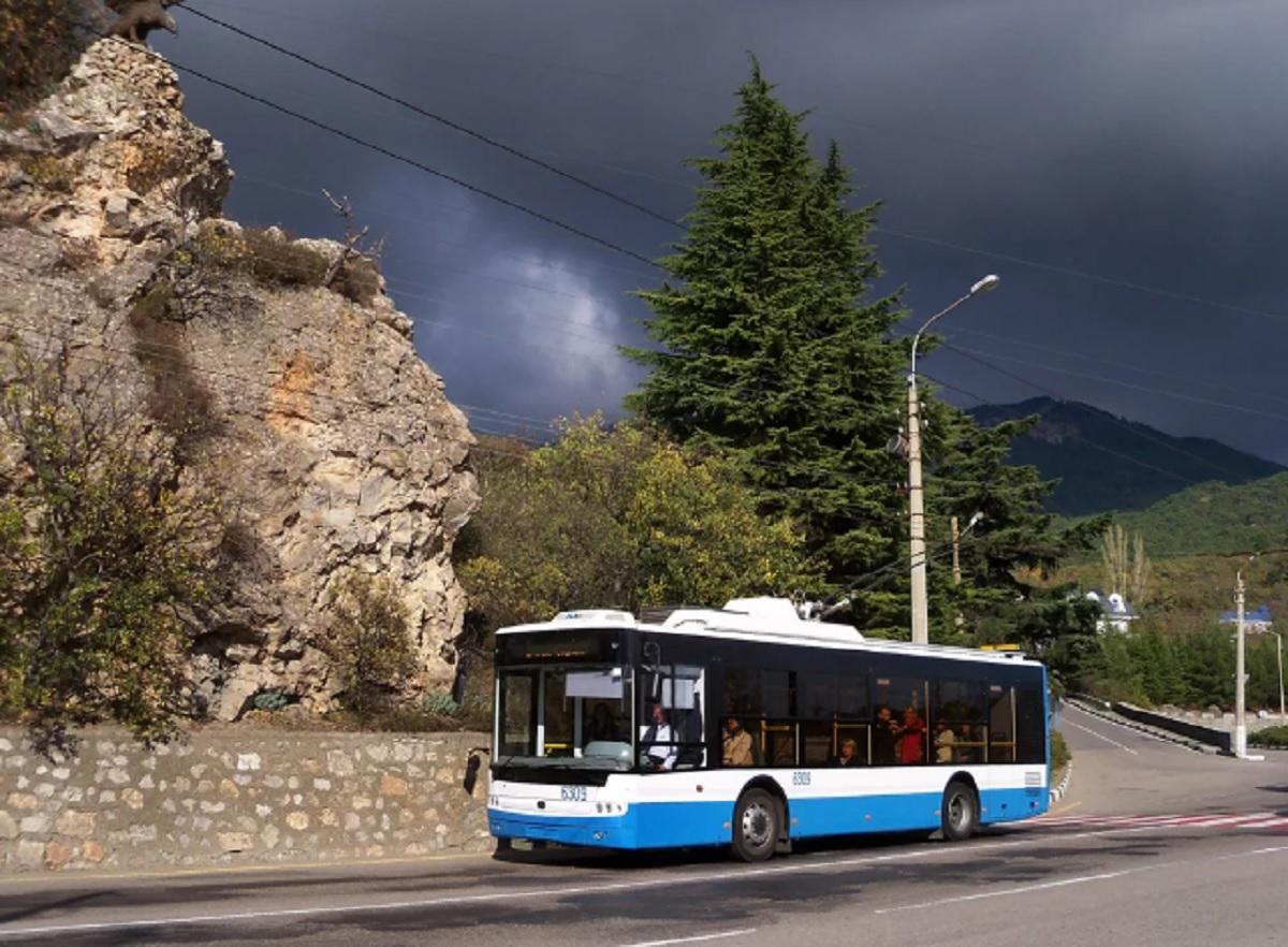 Стоимость проезда в троллейбусах в 2020 году
