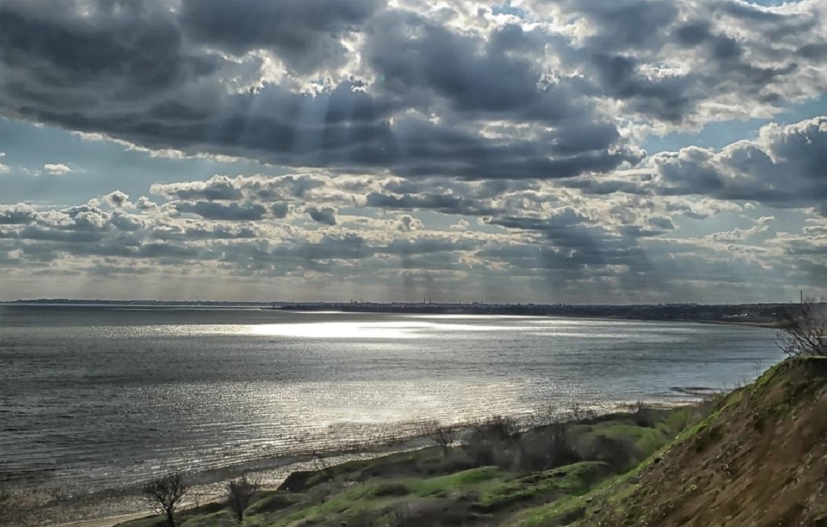 В Таганрогском заливе объявили чрезвычайное положение из-за массовой гибели рыбы