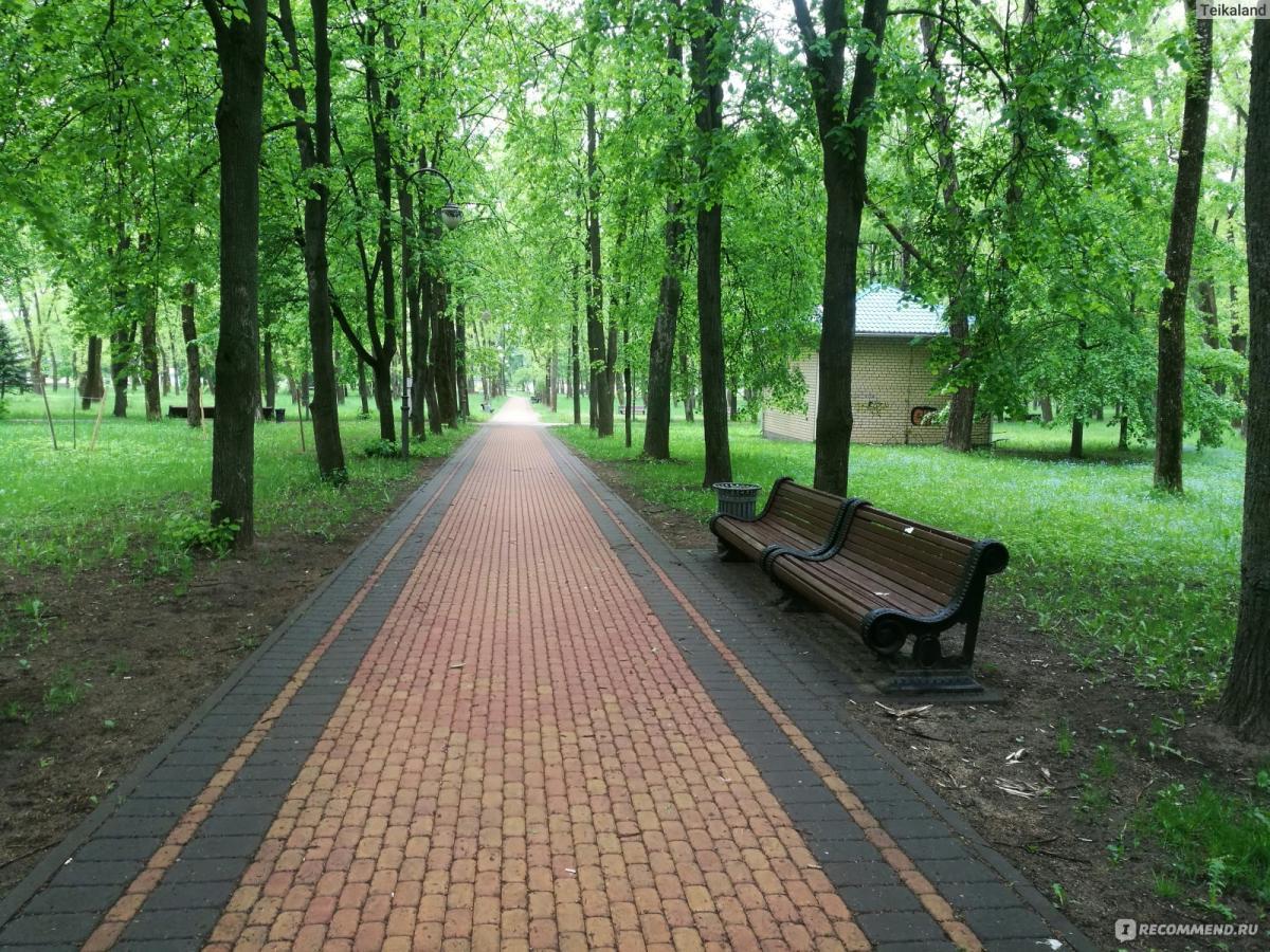 Преображение парка