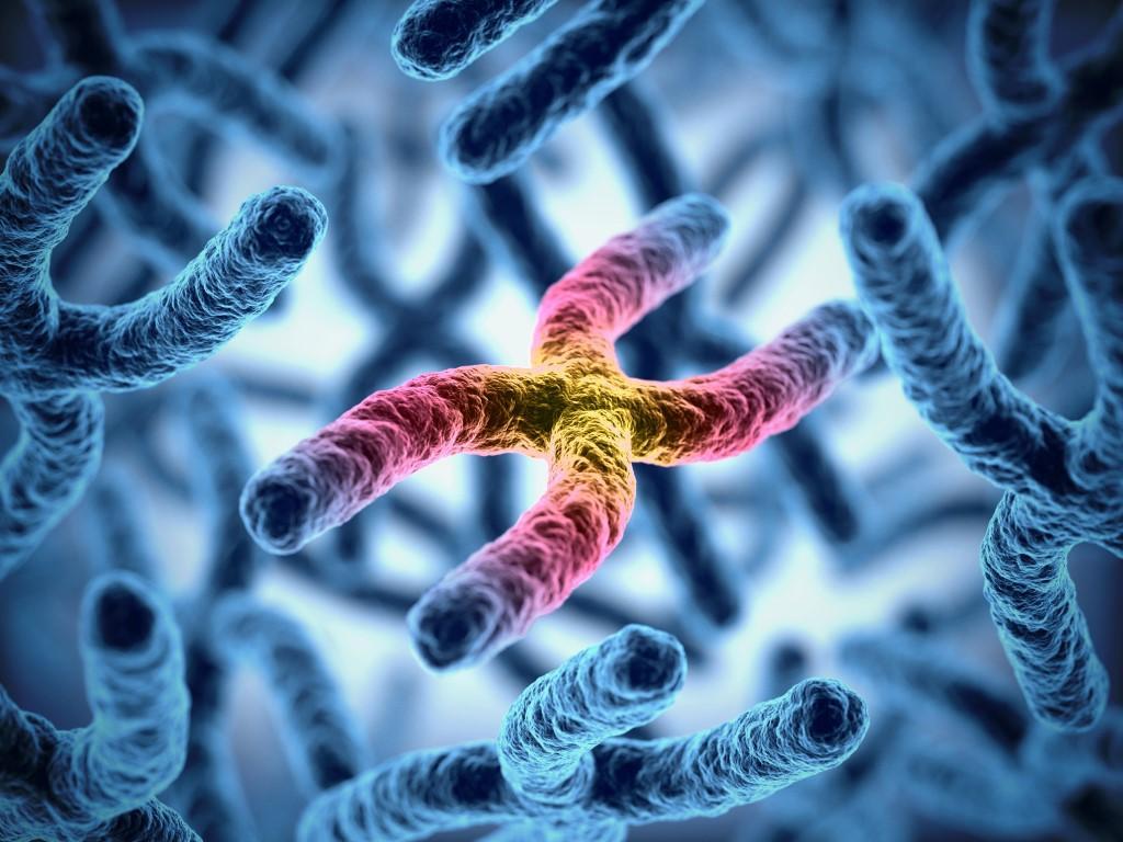 Ученые создали новый препарат против рака, действующий избирательно