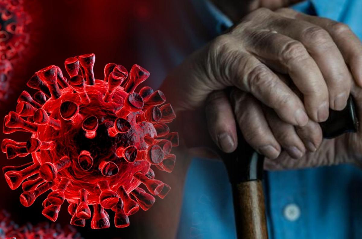 Биолог рассказала, сокращает ли коронавирус продолжительность жизни человека