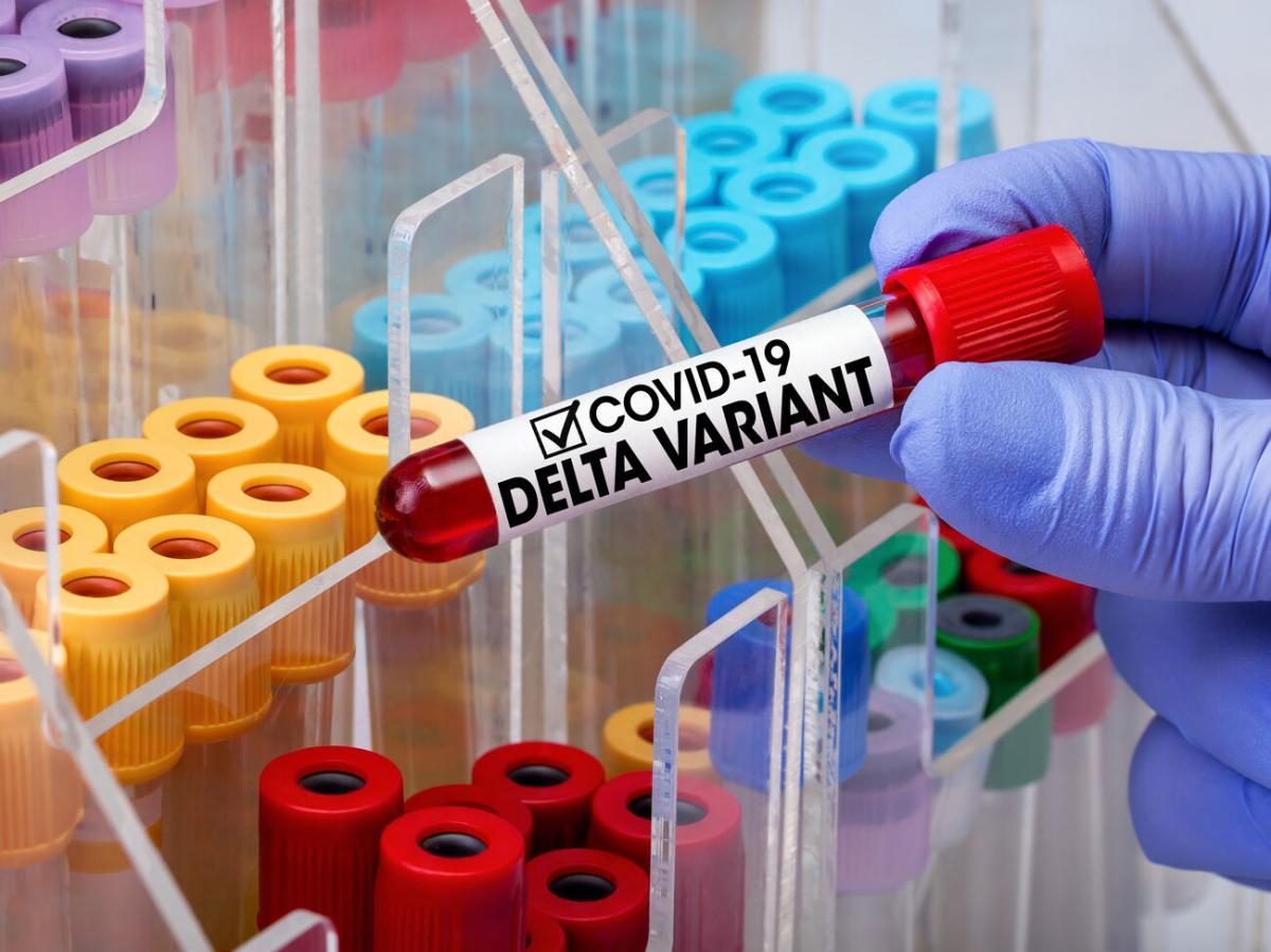Пробирки с вирусами в лаборатории