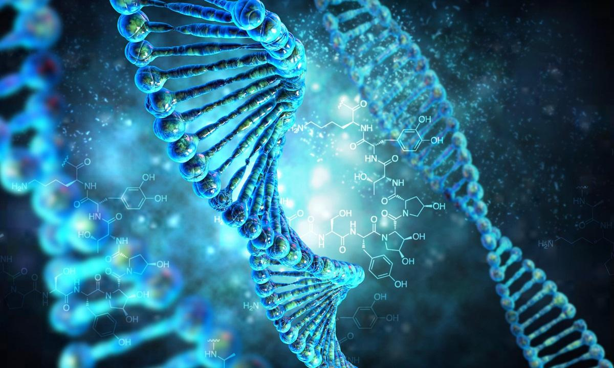 Ретровирусы в геноме человека могут быть активированы воздействием окружающей среды, заявили ученые