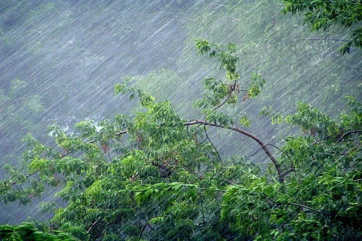 Волгоград гроза ураган
