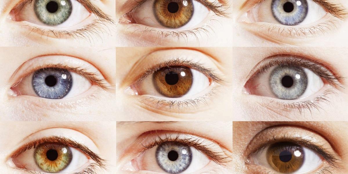 Какой характер по форме глаз как узнать характер по форме глаз по внешности физиогномика психология