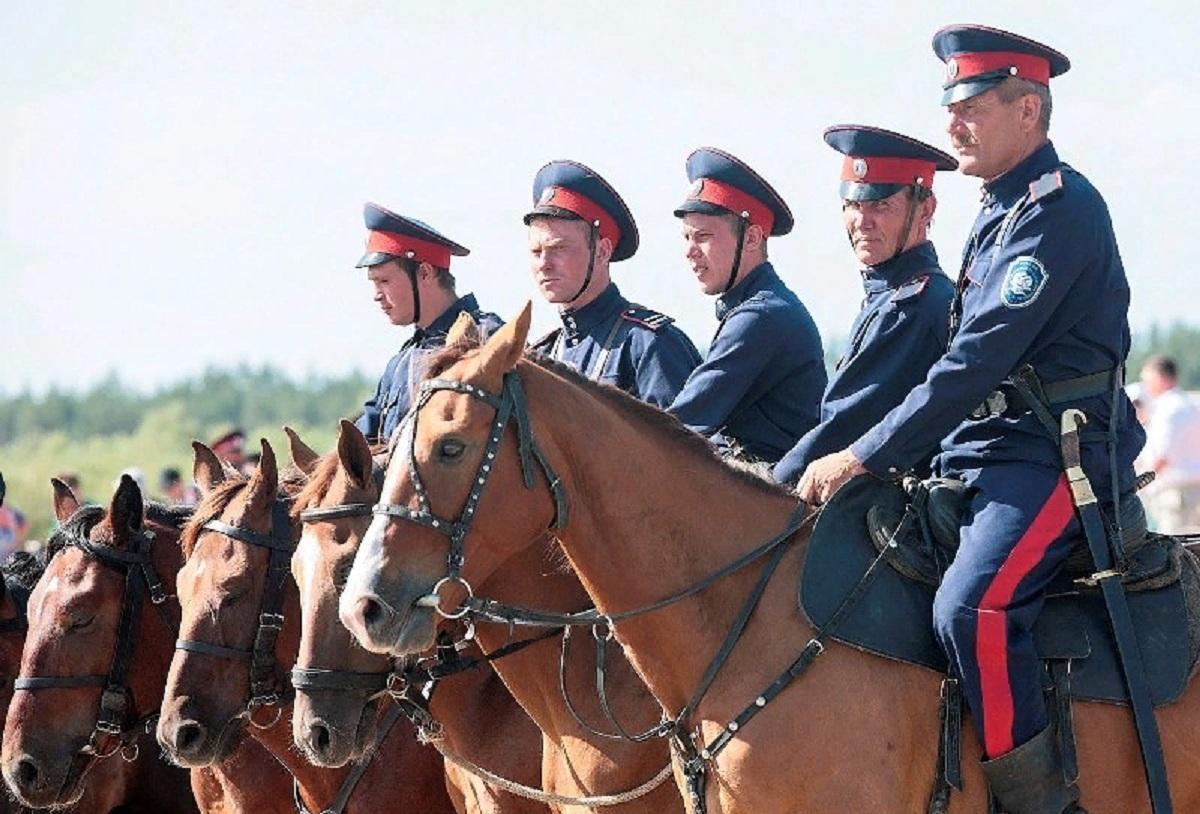 На Дону режим самоизоляции помогут контролировать казаки-дружинники