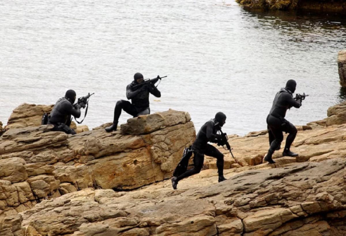 В Германии назвали основные места удара «морских котиков» США в Крыму