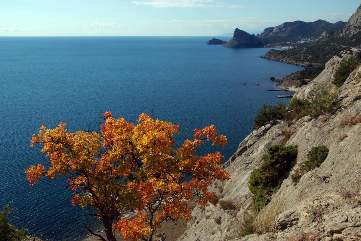 южный берег крыма октябрь