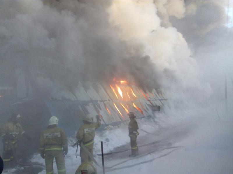 Пожар под Новосибирском