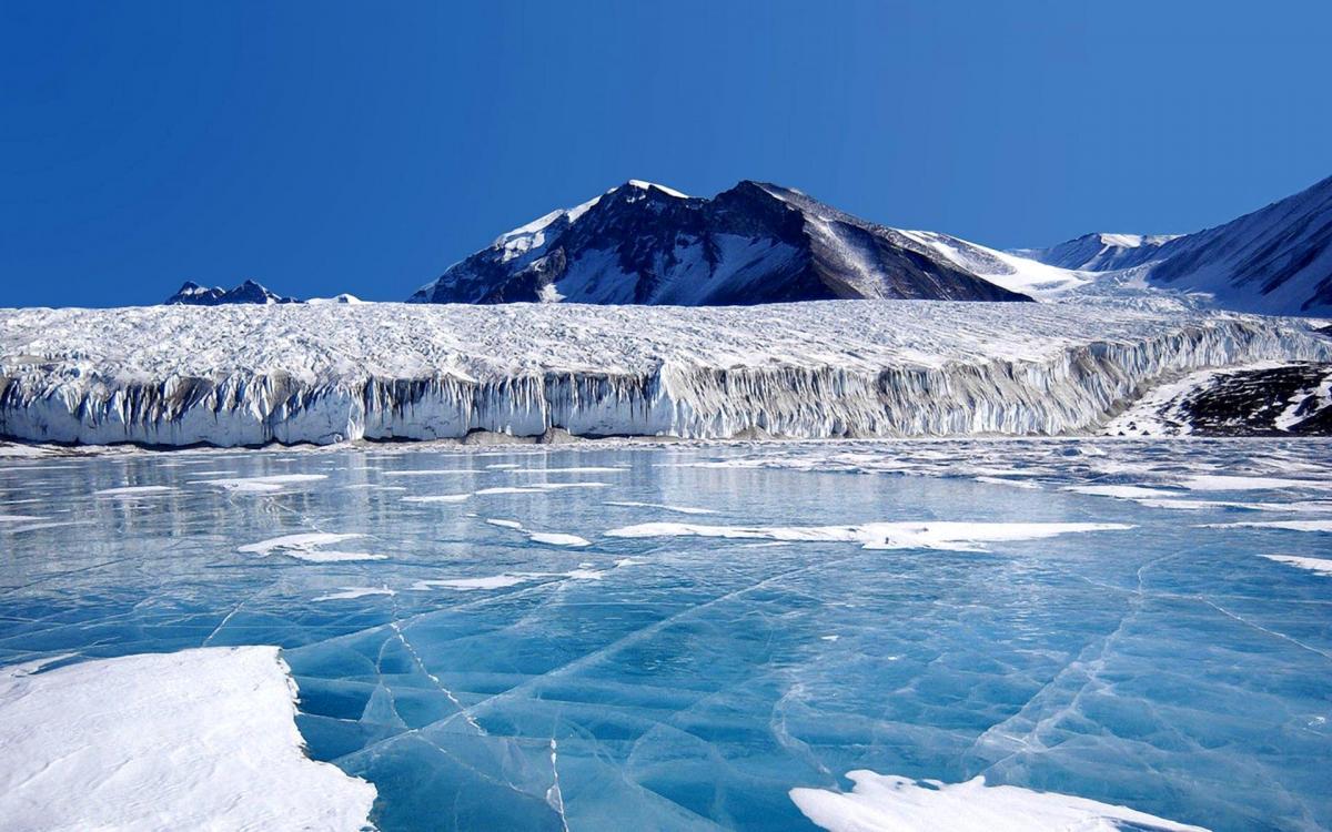 В Антарктиде обнаружен очень необычный объект – конспирологи и ученые выдвигают разные версии