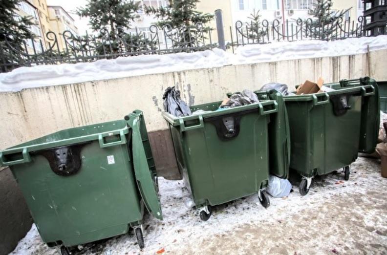 В Рязани женщина родила и выбросила новорожденного в мусорку