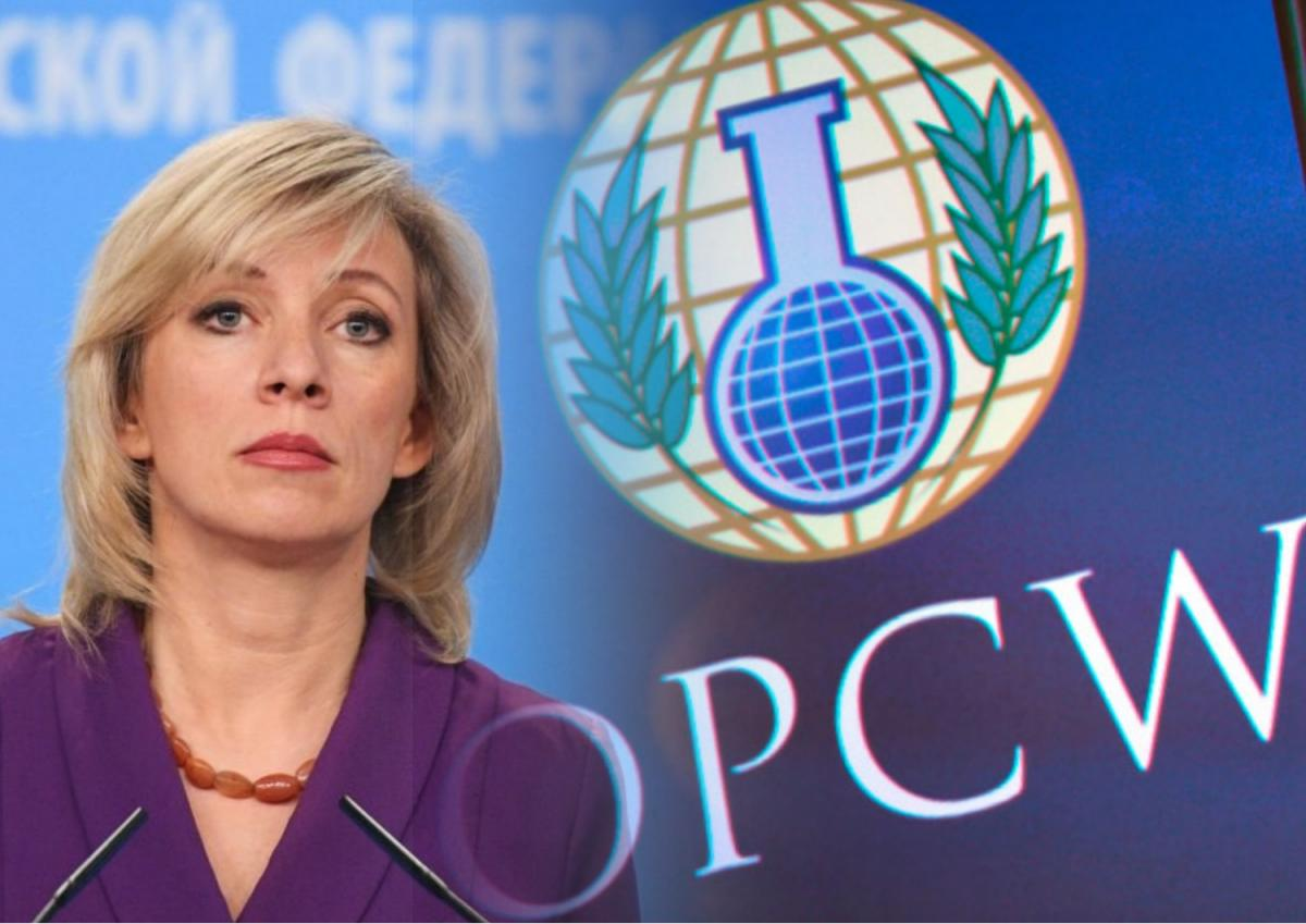 Захарова оценила прокол Германии в докладе ОЗХО