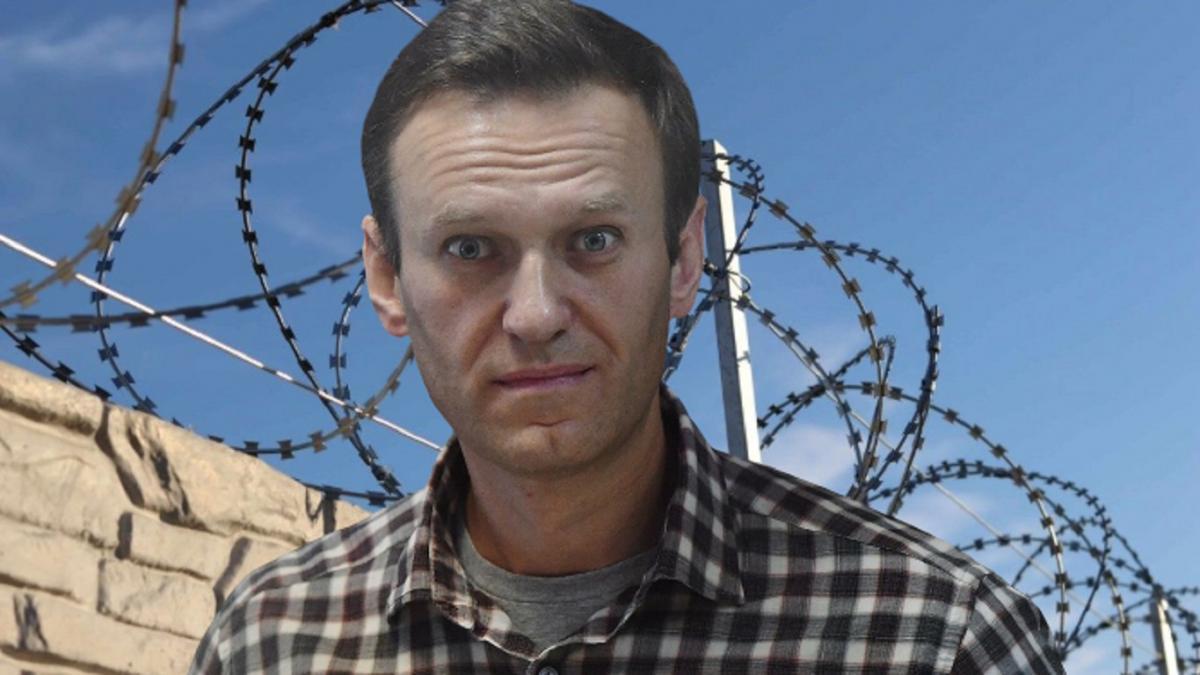 Во Франции сопоставили два факта в деле Навального: «Это победа Путина!»