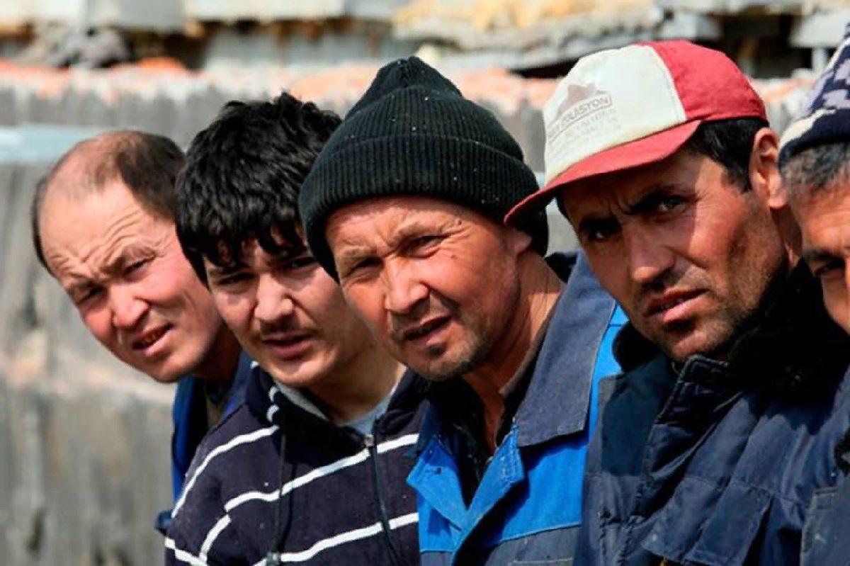 Названа причина рекордного прибытия мигрантов в Россию
