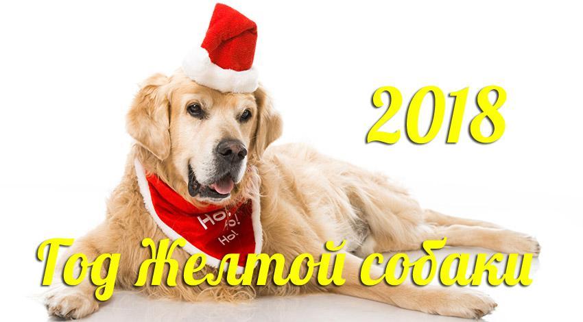 Новый год 2018 Собаки: картинки