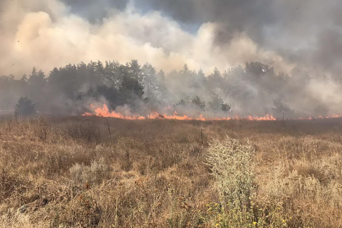 Пожар лес Россия