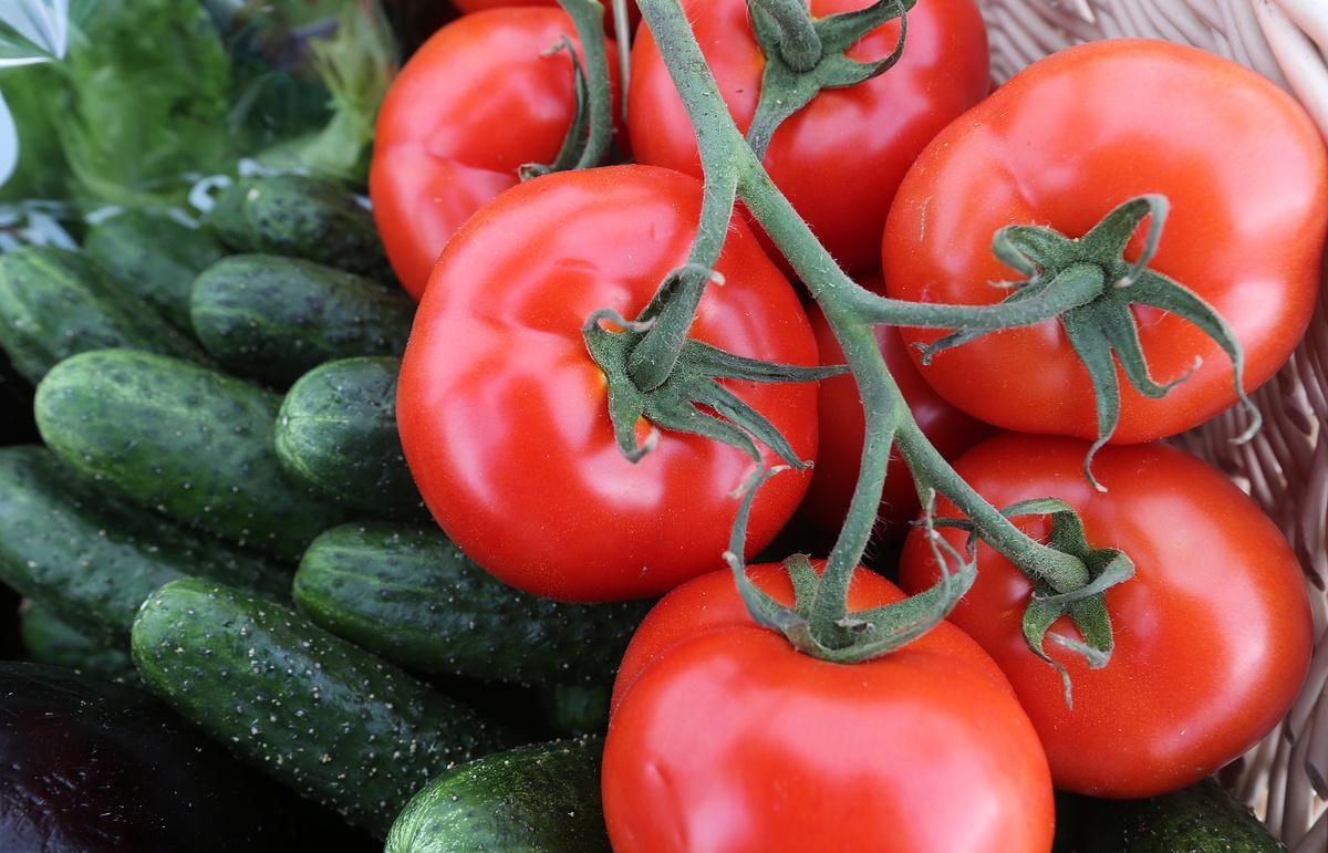 Ленивая подкормка для помидоров и огурцов, чтобы успеть собрать богатый урожай