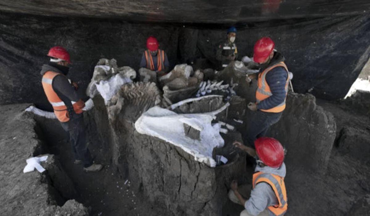 раскопки в Мексике