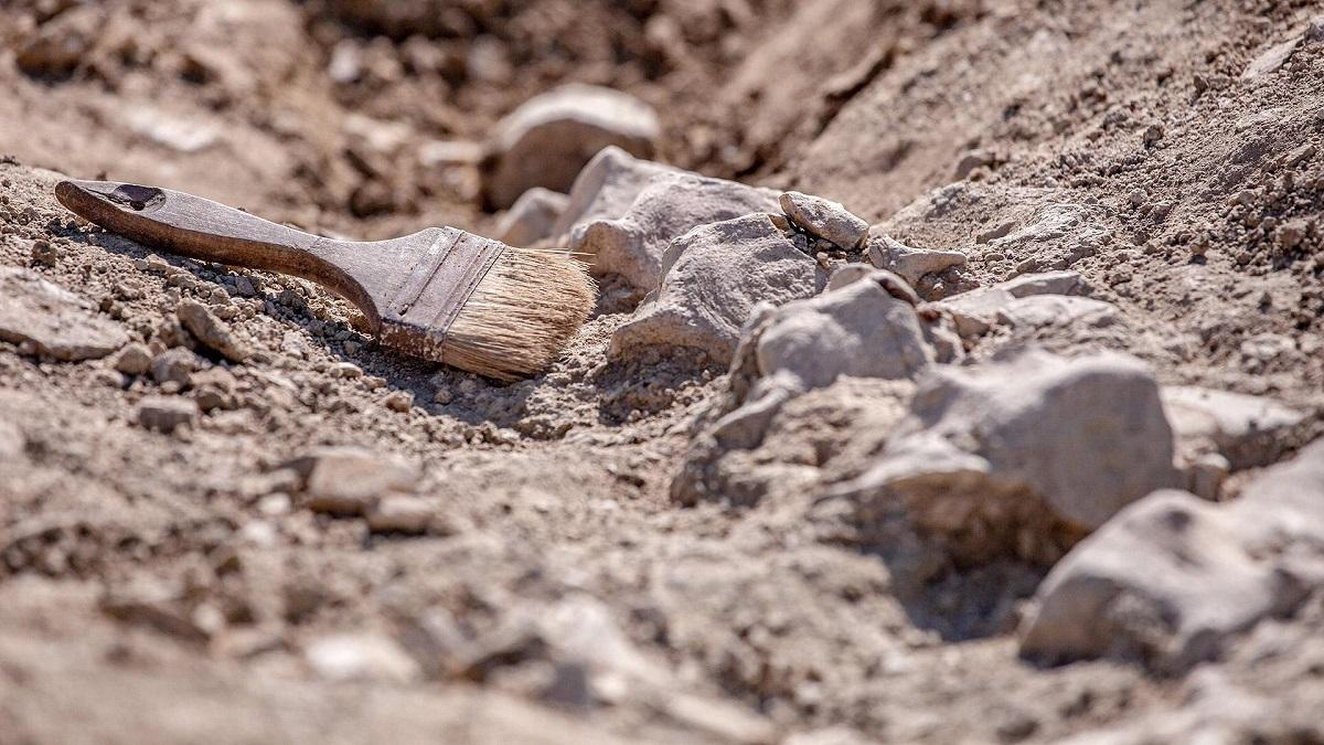 раскопки в Иордании
