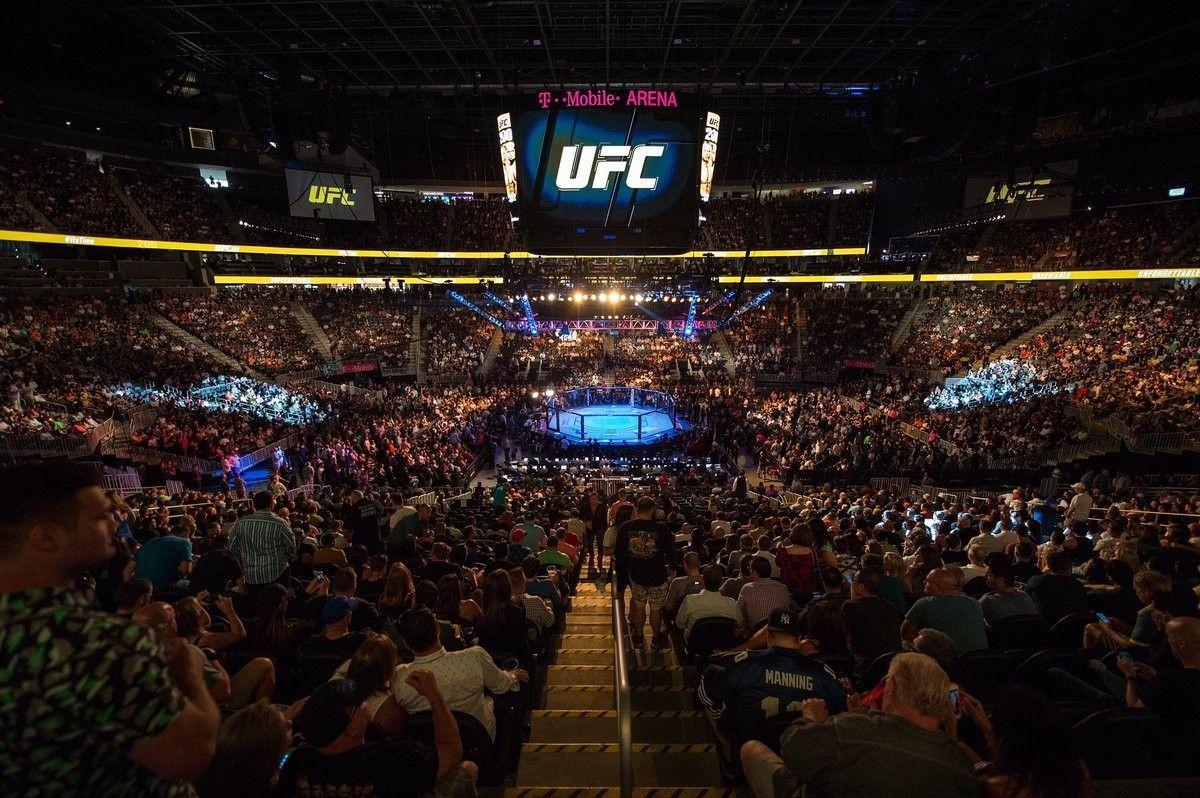 арена UFC для проведения поединков