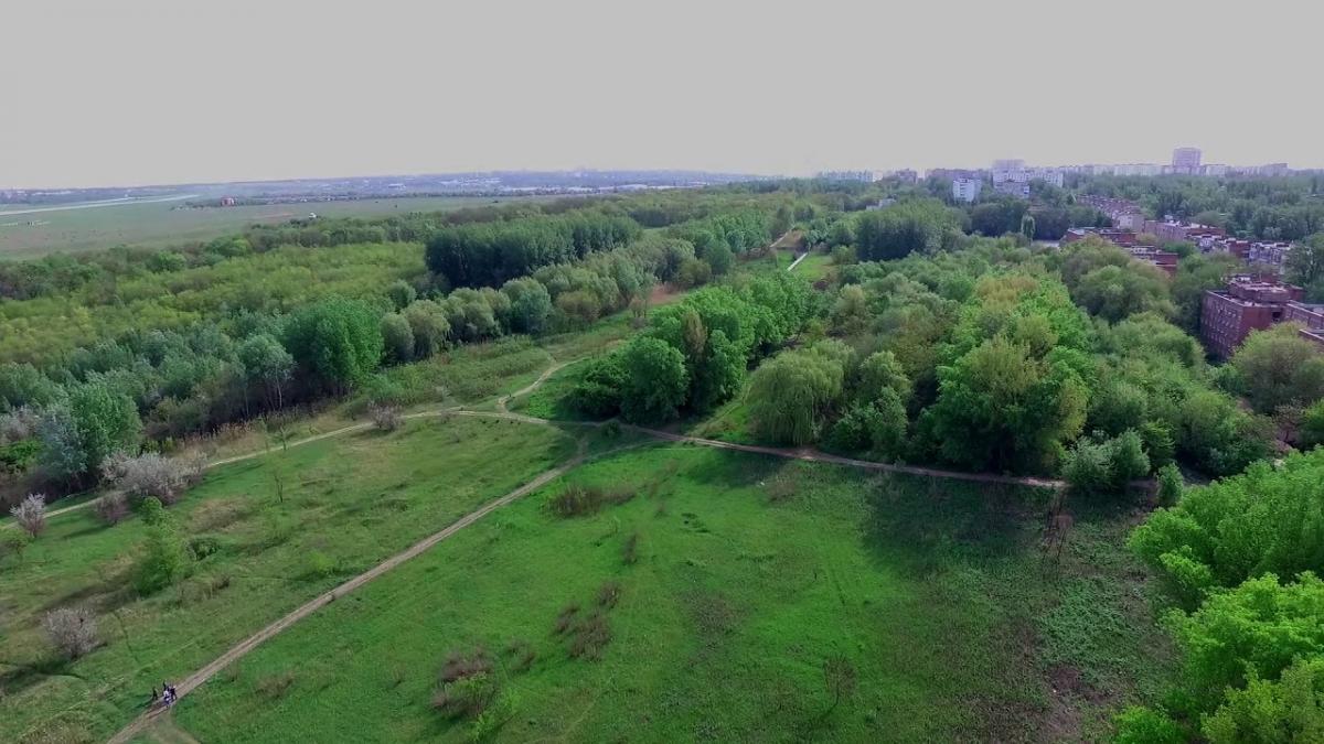 Александровская роща Ростов