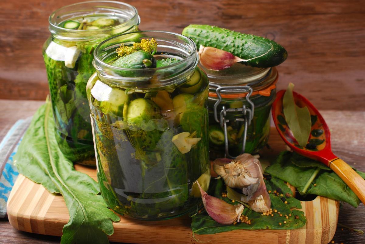 Досадные ошибки в консервировании огурцов, которые сделают заготовки невкусными: 4 нюанса засолки
