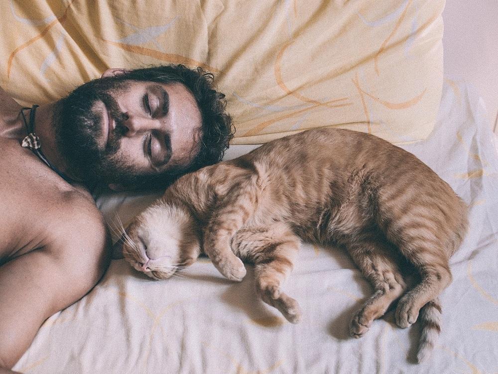Вредно ли отсыпаться на выходных, и чем чреват недосып, выяснили ученые