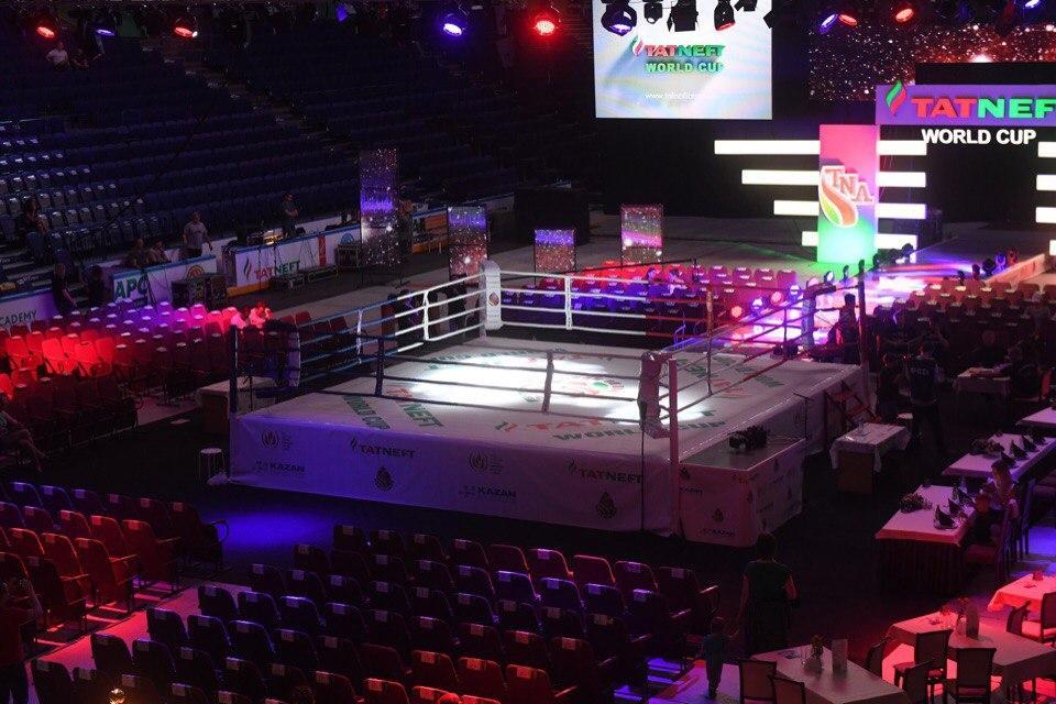 Кубок TATNEFT: чемпионат мира по правилам TNA 14 декабря 2017 в Казани - финалы, по какому каналу прямая трансляция