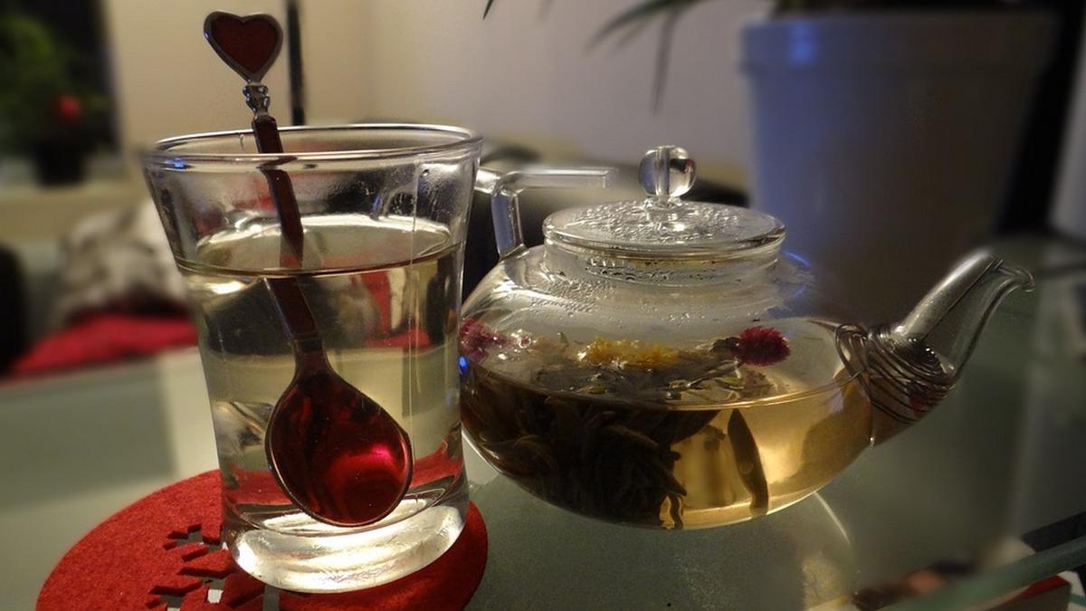 Рецептом целебного напитка на основе зеленого чая поделилась Елена Малышева