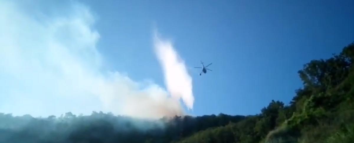 Тушение пожара на Черноморском побережье Краснодарского края сняли на видео