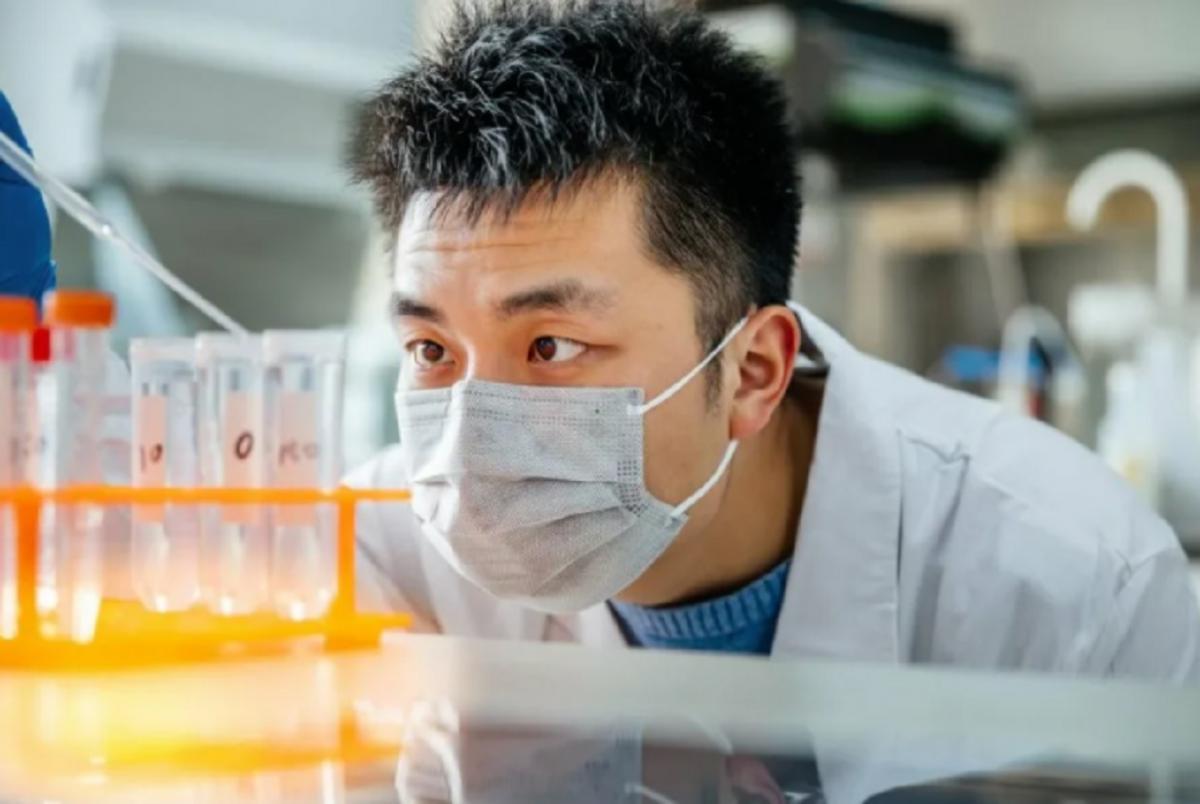 В Китае зафиксирован случай заражения человека штаммом птичьего гриппа